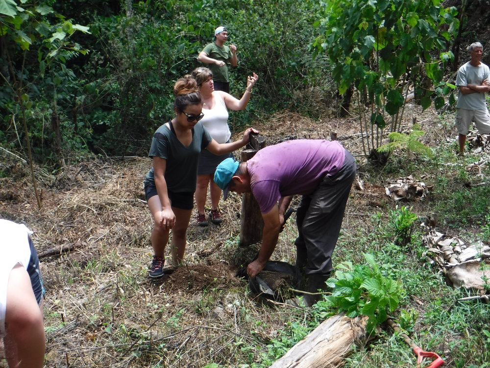 Our groups are a part of a localreforestation & conservation project in Costa Rica. Each student/chaperone will plant an endangered native tree. Eventually these trees will form a biological corridor and provide food, shelter and habitat to local wildlife. -