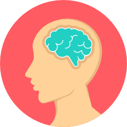 brain+(2).png