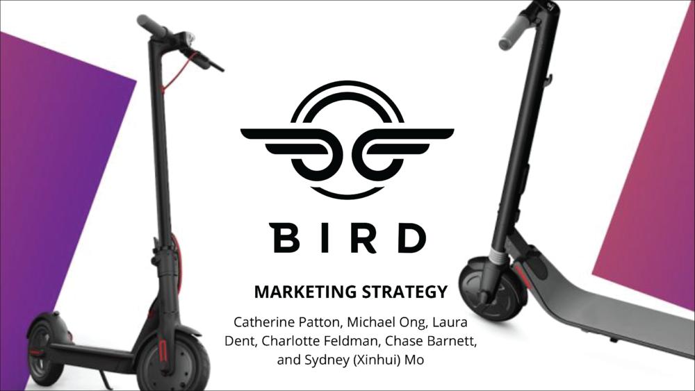 Bird Final Presentation   New Marketing Plan