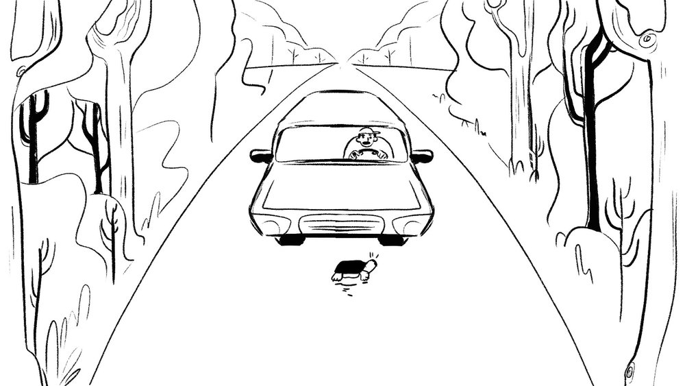 woodturtle_storyboards_37.jpg