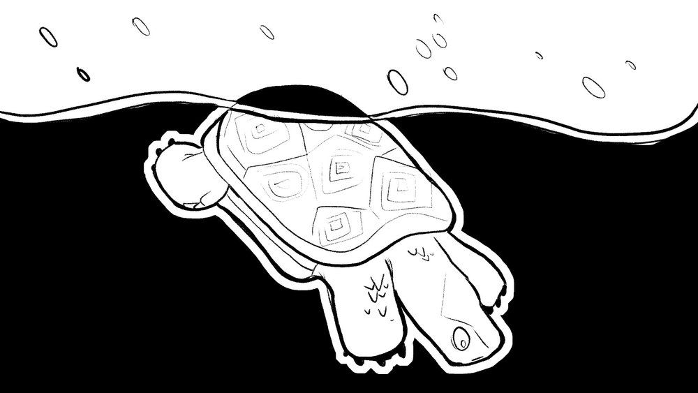 woodturtle_storyboards_56.jpg