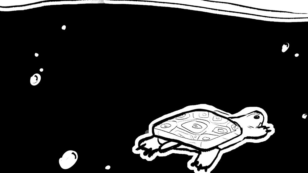 woodturtle_storyboards_57.jpg