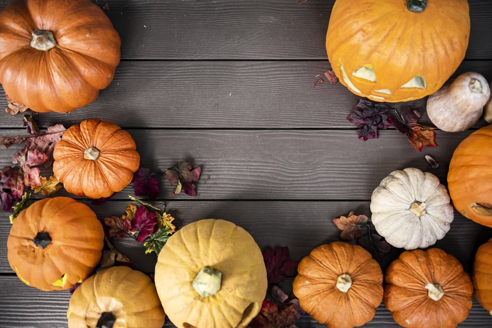 Pumpkin Abundance - Surprising Nutritional Benefits of the Humble Pumpkin