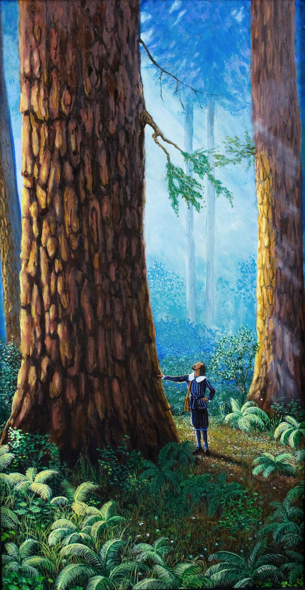 Redwoods       $3000.