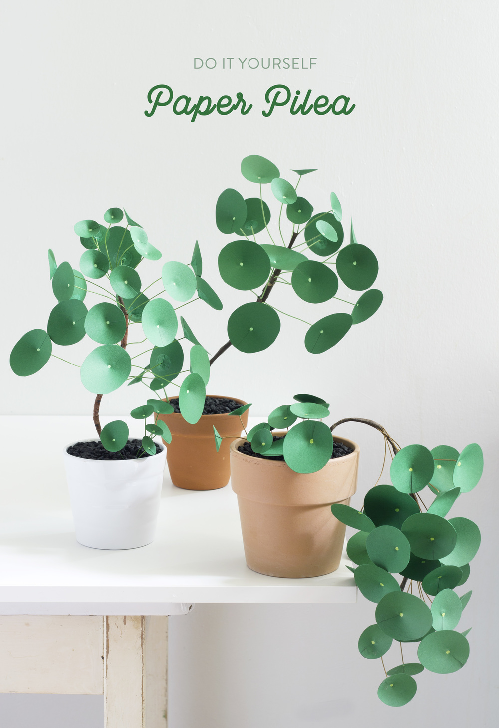 Paper Pilea 20 The Apple Of My Diy