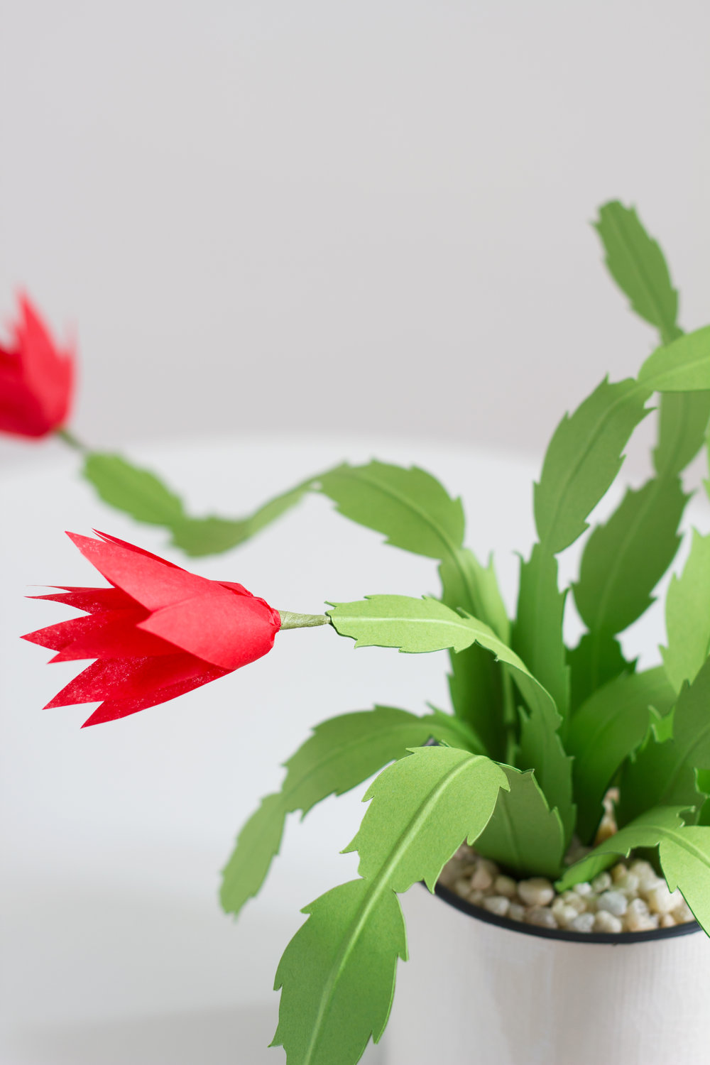 Paper Christmas Cactus — The Apple of My DIY