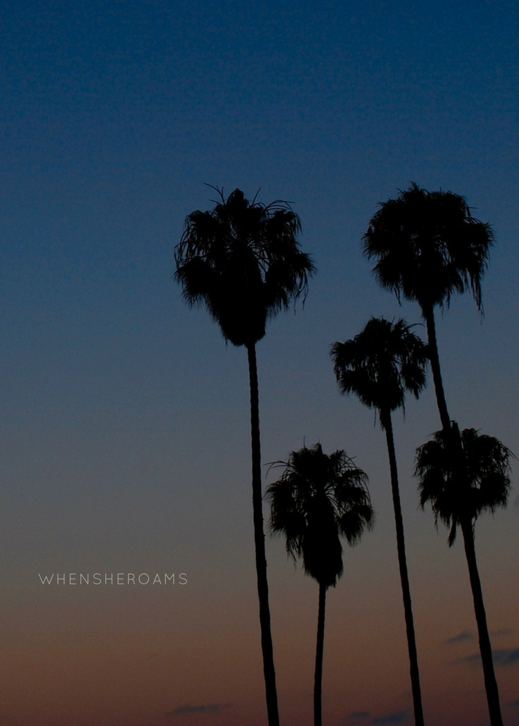 mission-beach-san-diego-whensheroams