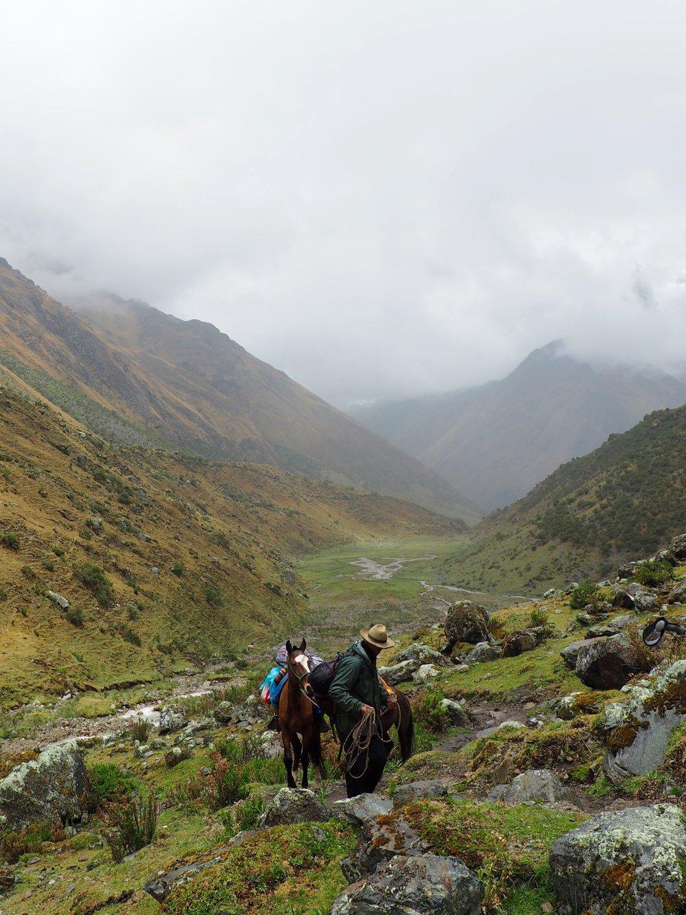 Horseman on the Salkantay Trek, Peru 2017