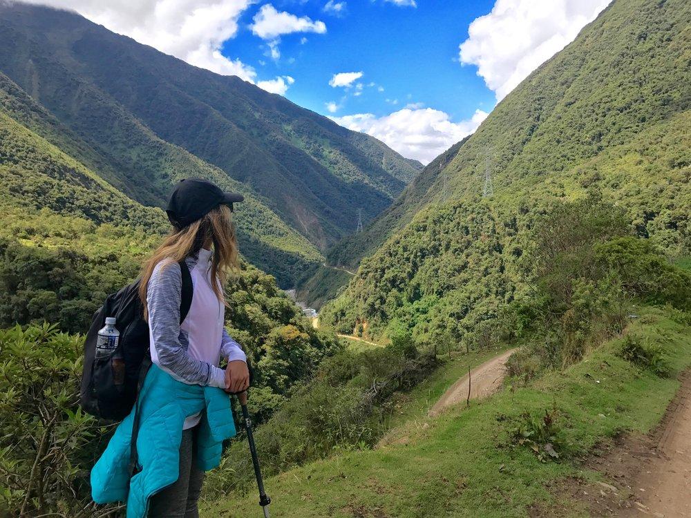 Subtropics surrounding Machu Picchu, Peru 2017
