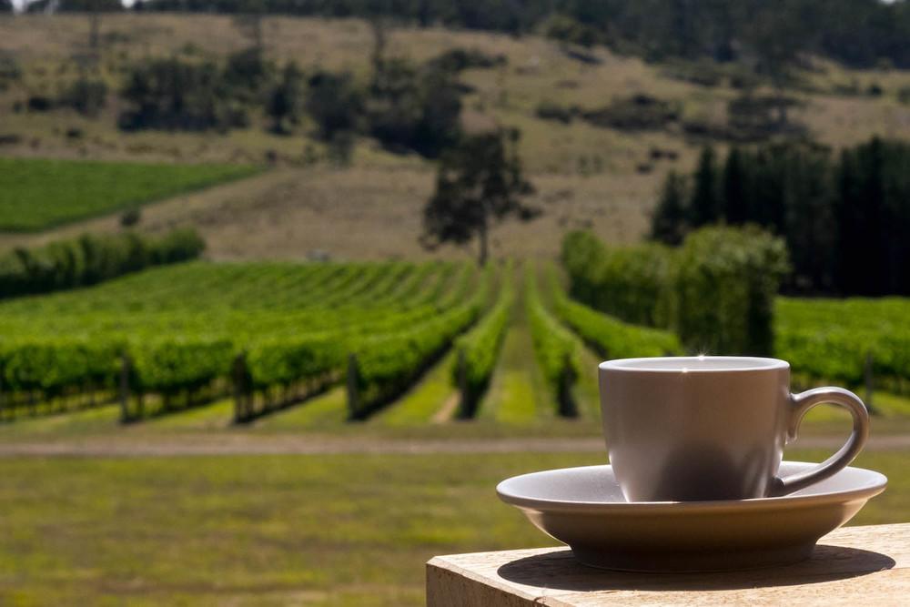Tombolo Freycinet - Vineyard moments