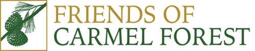 Friends of Carmel Forest