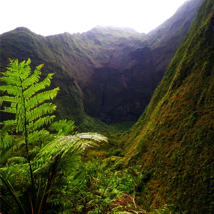 A Truly Special Opportunity -  Kauai from a Shamanic Perspective