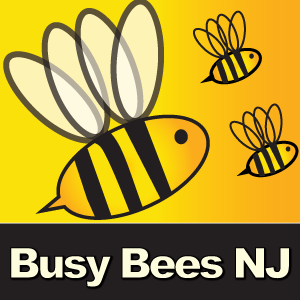Busy Bees NJ LLC