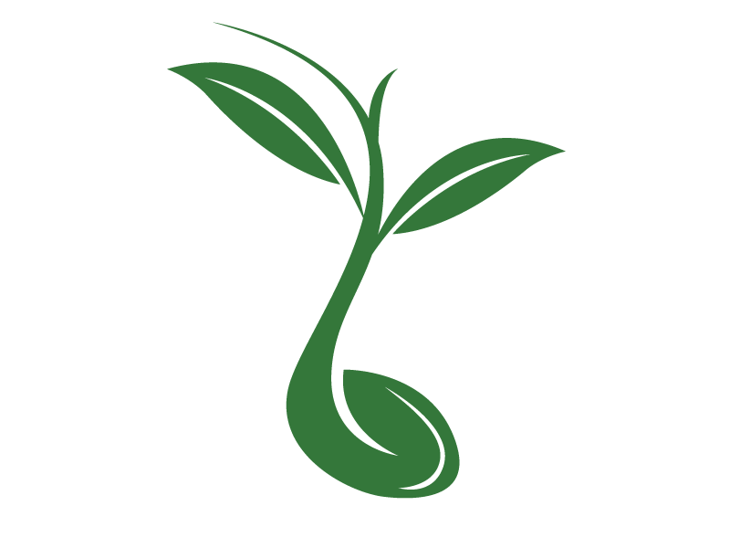 radicle-logo-solo-green.png