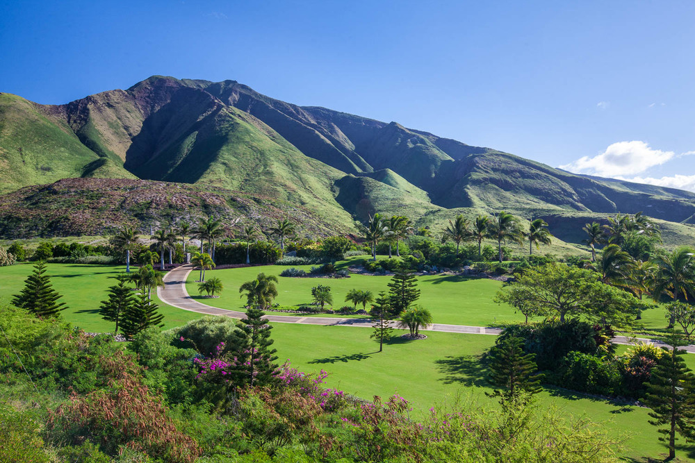 arial-view-chris-curtis-landscaping-west-maui.jpg