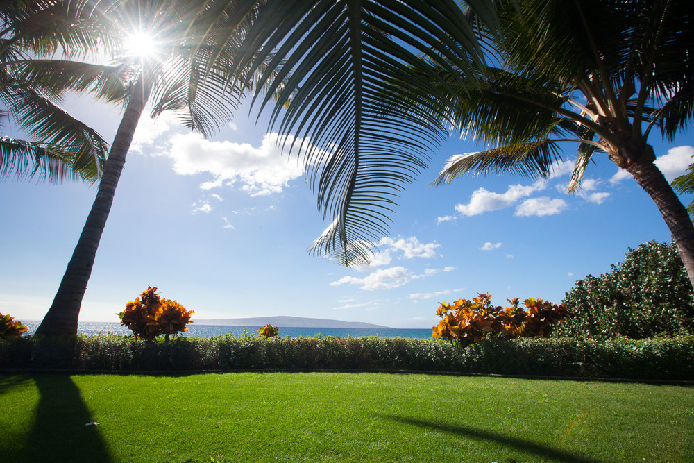 makena-landscaping-photograph-pueo-creations.jpg
