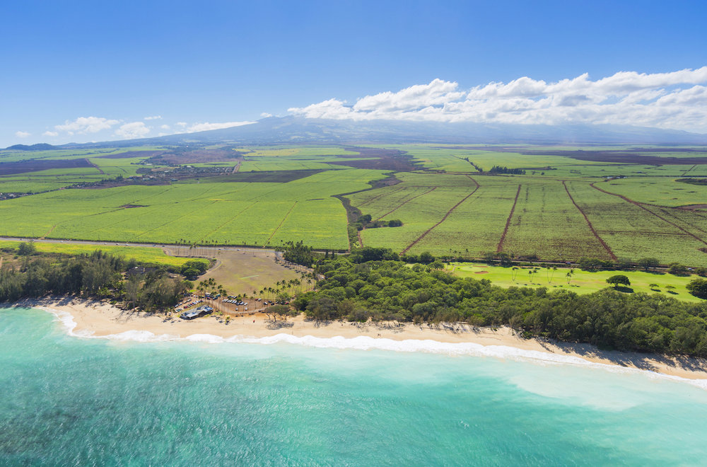 private-tour-maui-north-coastline.jpg