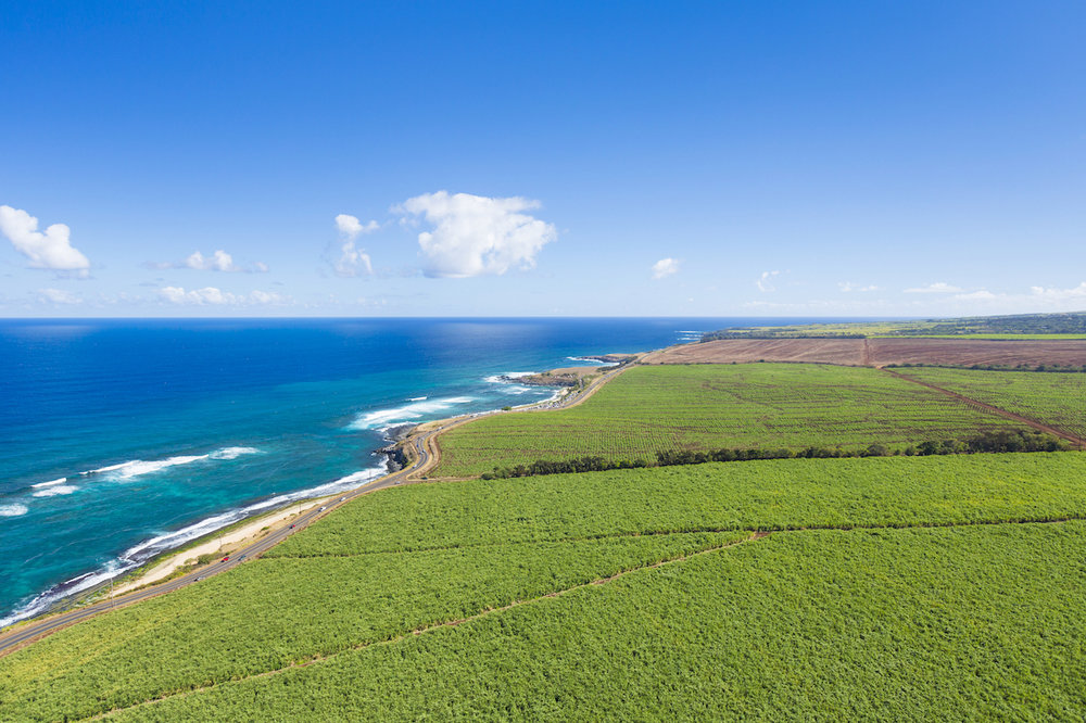 north-shore-maui-private-exclusive-tours.jpg