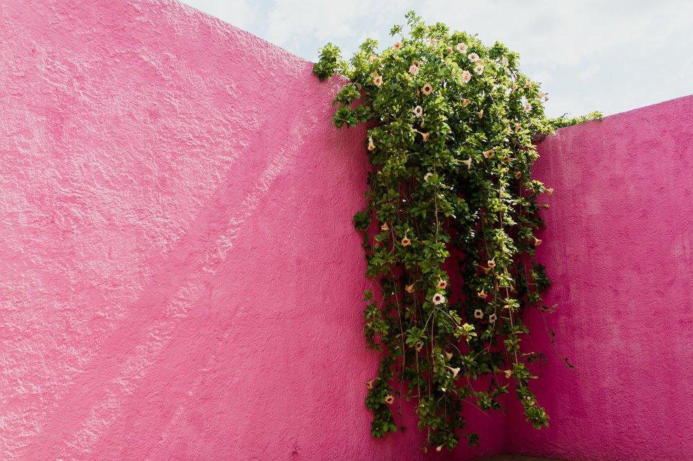 mexico-city-519.jpg