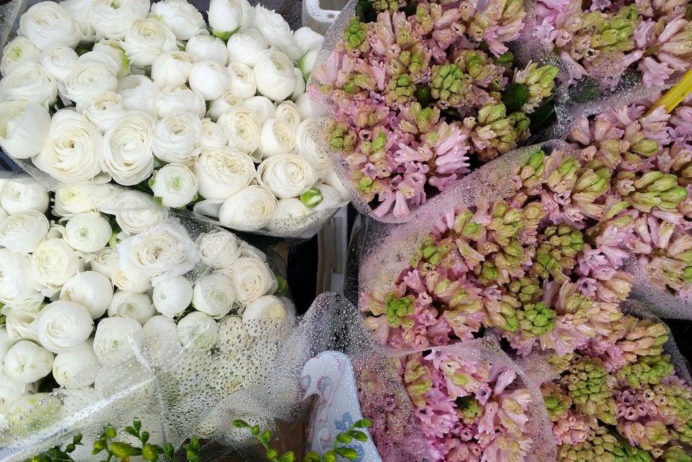 utrecht-netherlands-character-32-c32-globetrotter-flowers