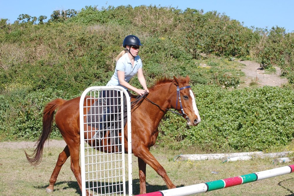 jumping-horse-riding-character-32-horse-loving-that-whats-next-lifestyle-c32