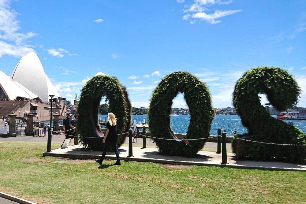 sydney-australia-character-32-c32-travel-opera-house-botanical-garden