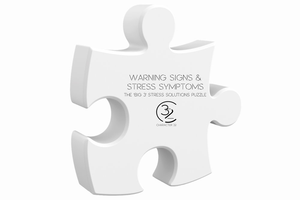 warning-signs-symptoms-stress-management-coping-dealing-with-stress-signs-and-symptoms-the-big-3-puzzle-character-32-c32