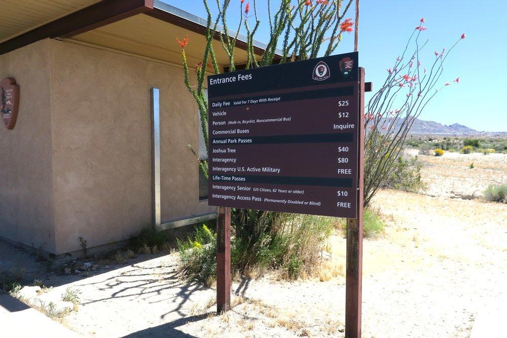 joshua-tree-desert-california-character-32-c32-travel-america-usa-cost