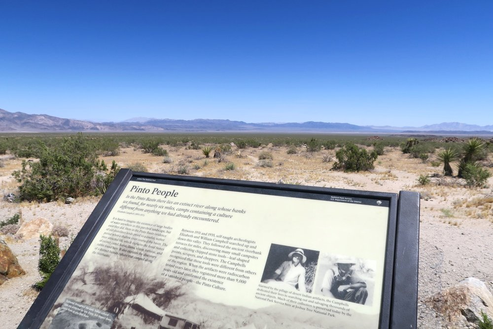 joshua-tree-desert-california-character-32-c32-travel-america-usa-pinto-people