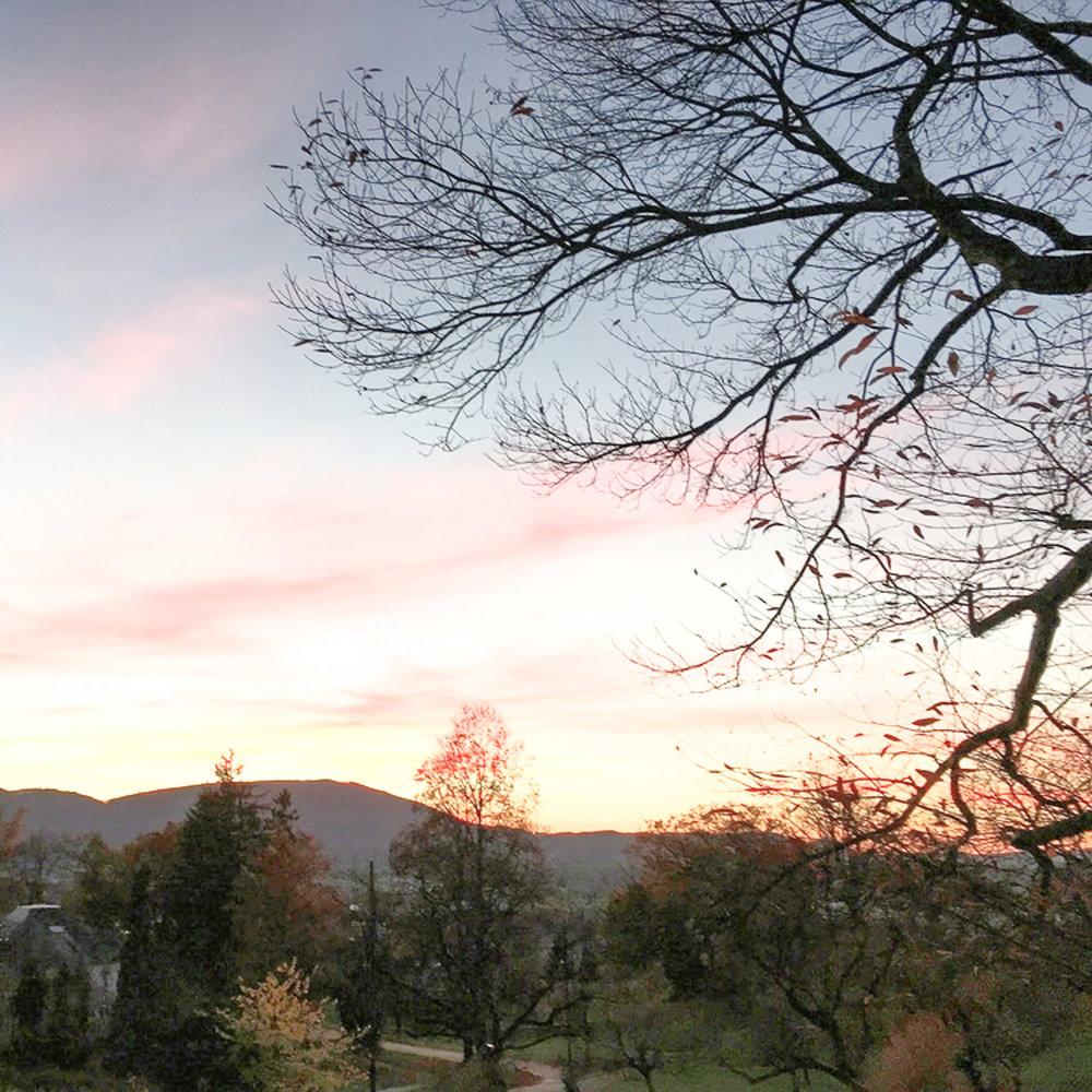 Landschaft - Das Goetheanum-Gelände bildet einen einmaligen Lebensort, wo die Vergangenheit und Gegenwart der anthroposophisch-organischen Architektur erlebt werden kann. Diese Kulturumgebung klingt mit der ruhigen Jura-Landschaft zusammen. Der Goetheanum-Garten realisiert eine einmalige Verbindung von Landschaftsarchitektur, biologisch-dynamischer Landwirtschaft und einem über einhundert Jahre gewachsenen Park.