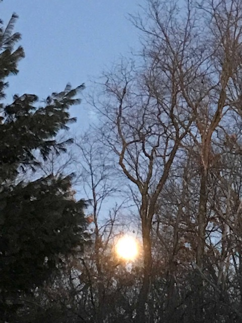 The Super Wolf Moon rising Jan. 21, 2019, pre-eclipse.