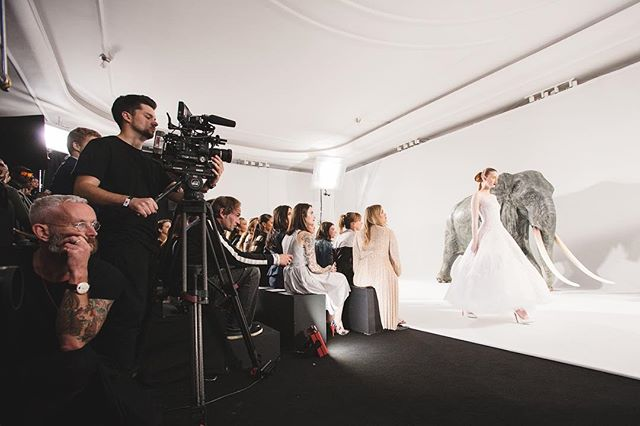 Showtime! Nicholas Oakwell Couture AW16 in The Ballroom at Claridges. See more photo highlights at suziejay.com  #eventprofs #events #eventphotography #IGLondon #London #claridges #nicholasoakwell #fashion #fashionshow #FOH #catwalk
