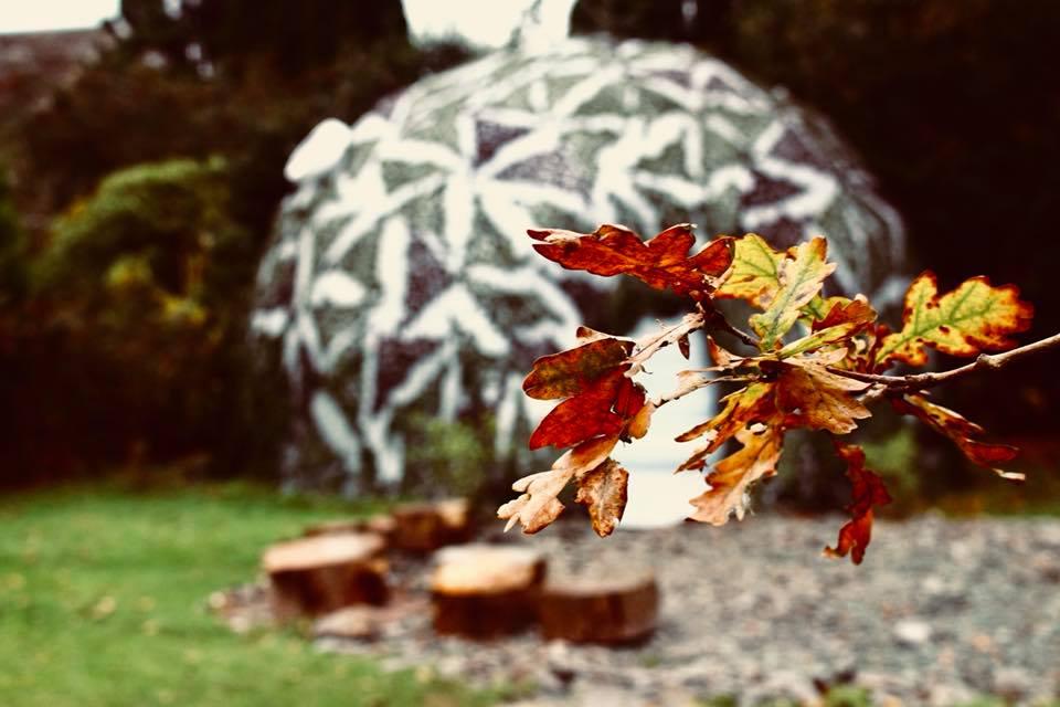 Yoga dome x 2.jpg