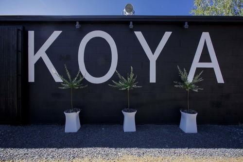 koya 3.jpg