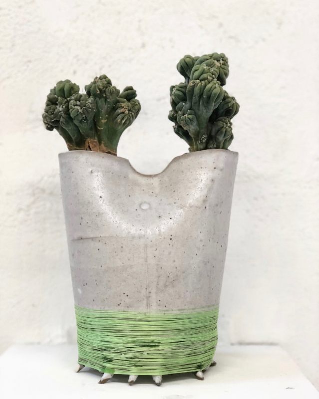 "This is Zooey. Ceramic. cactus, thread. 12"" x 8"" x 4"". $1200. Water once every 2 weeks lightly.  SOLD"