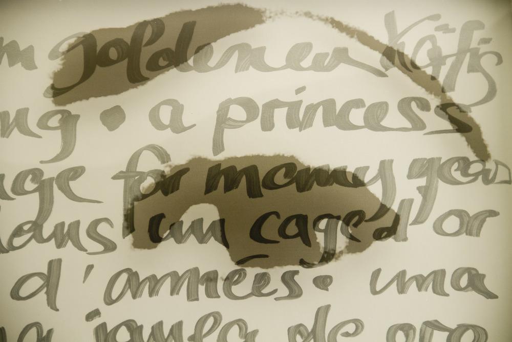 princess in golden cage II (2).jpg