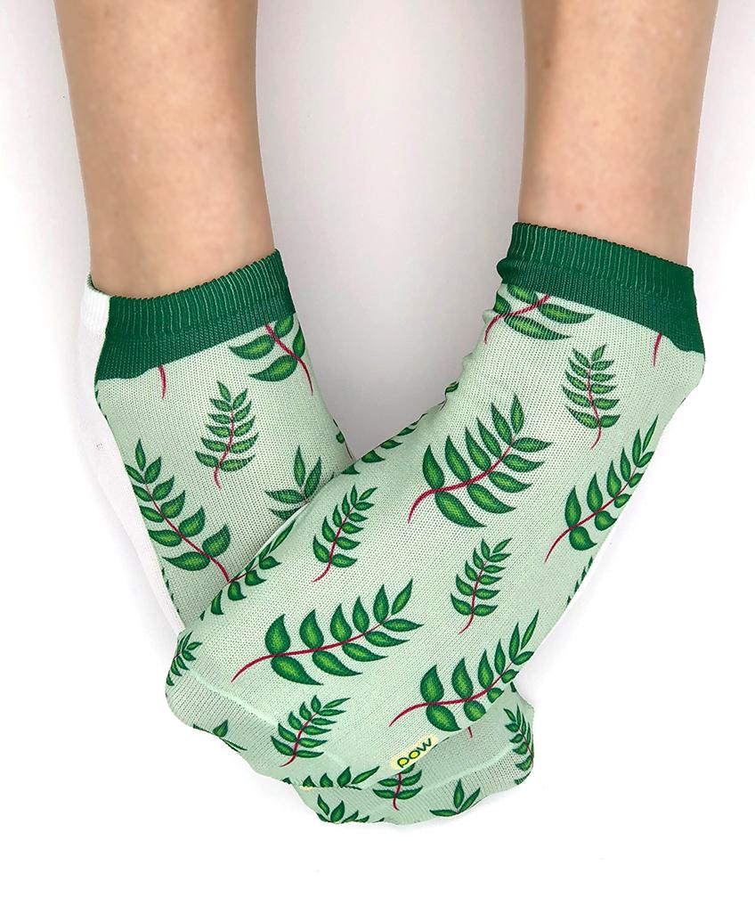 Socks_Fern.jpg