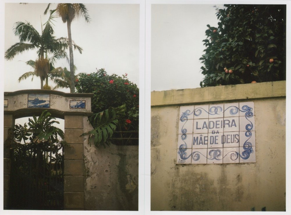 Ponta Delgada Street Signs.jpg