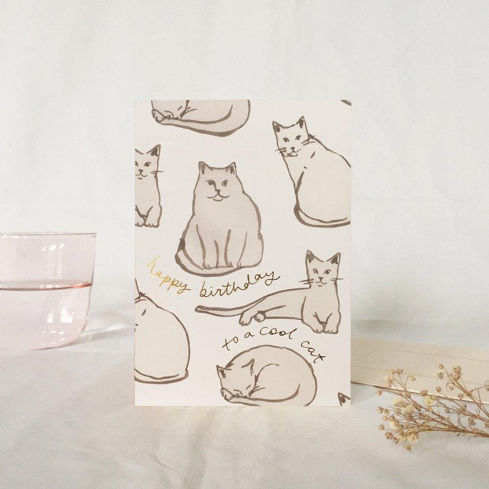 Cool+Cat+Birthday+Website.jpg