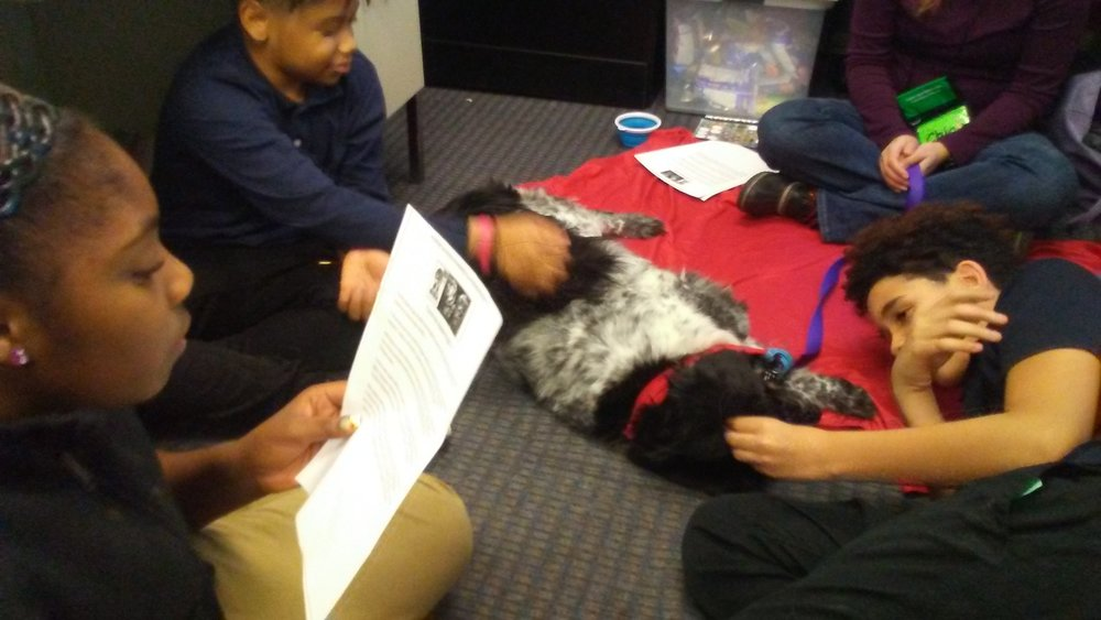 UPCS 6-12 6th grade students read to a dog from Tail Waggin Tutors