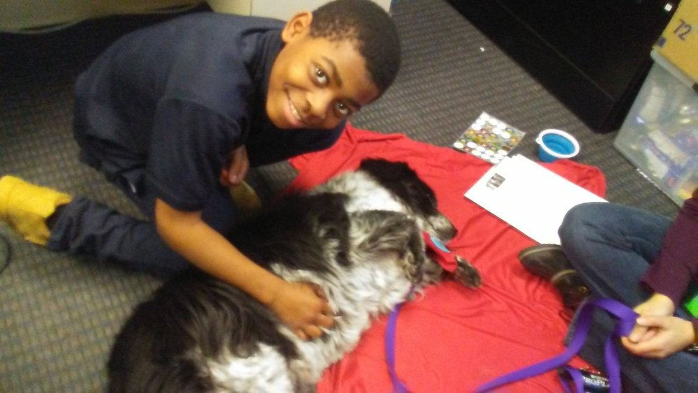 a sixth grade student from UPCS 6-12 with a dog from Tail Waggin Tutors