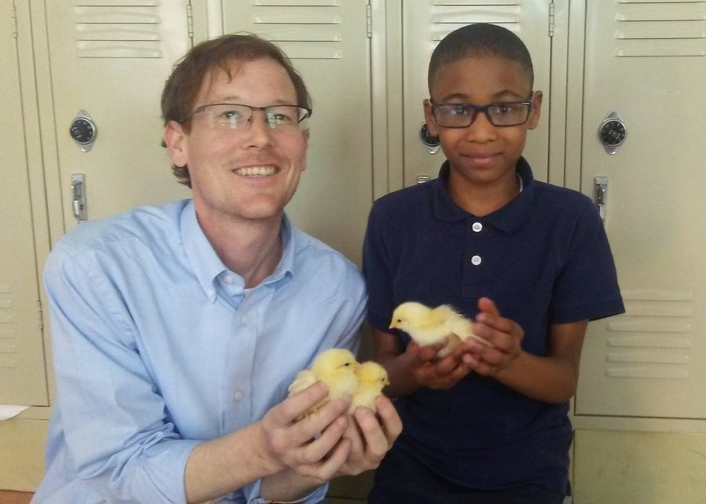 Mr. Corbett shows off the chicks hatched in his class at UPCS 6-12