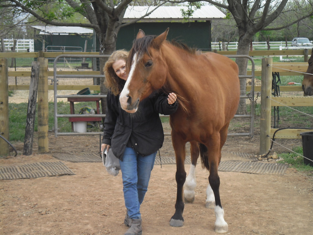 Facilitator Training — equine assisted learning center