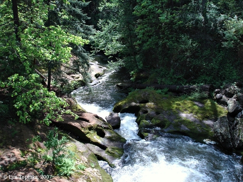 The beautiful creek at Lacamas Lake Park, Camas WA