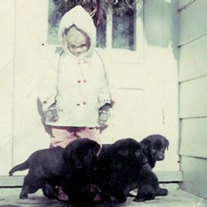 I have always loved dogs.