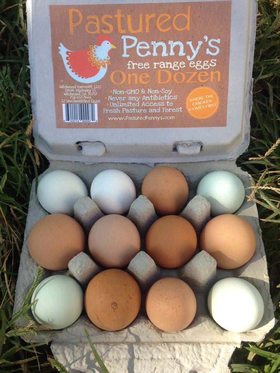 Egg Photo.jpg
