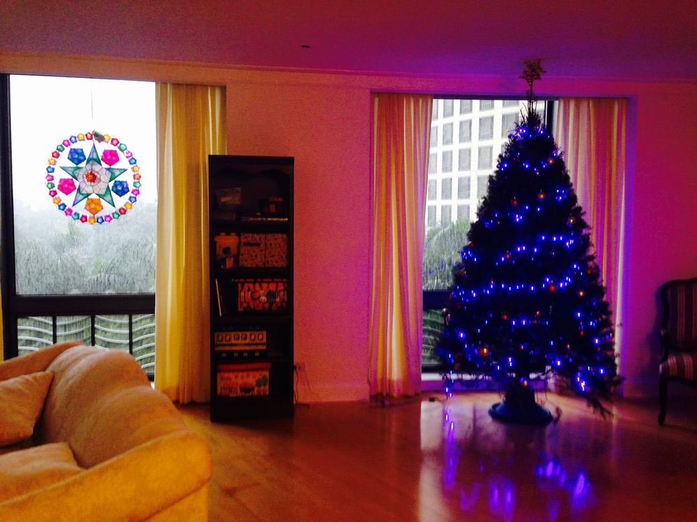 Tree in our apartment and our parol!