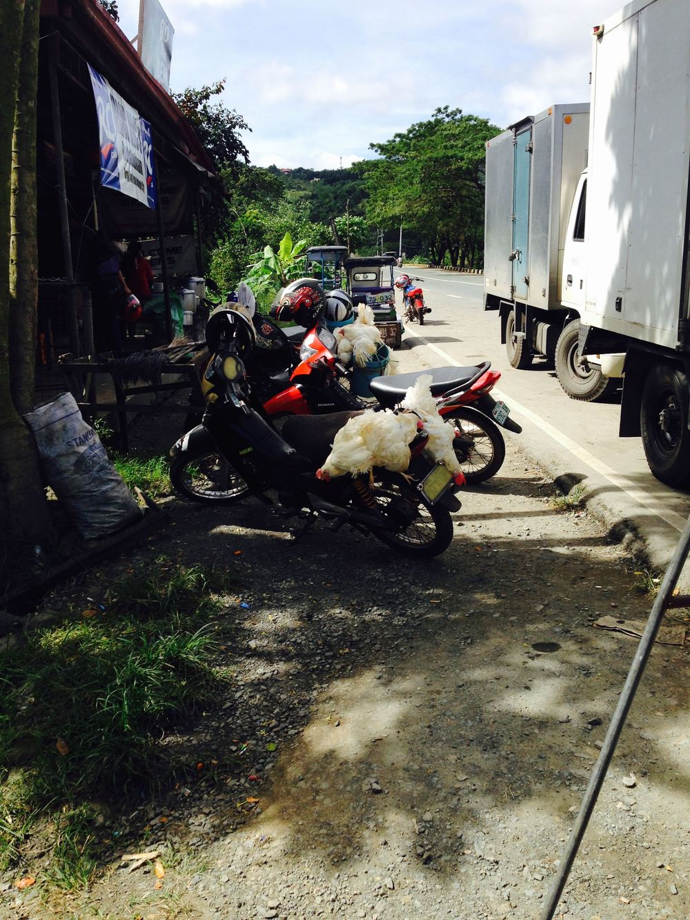 Motorcycles parked at a carinderia (after the drivers bought live chickens in the market)