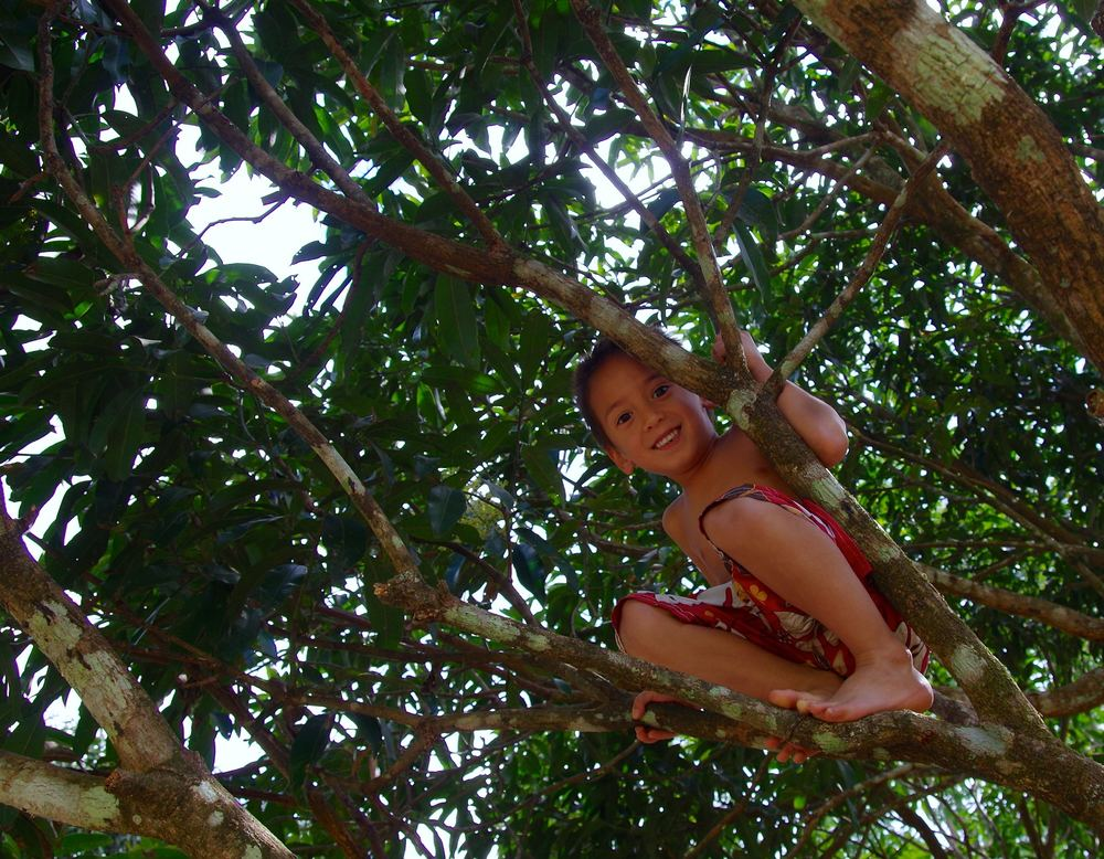 Mastered the art of climbing trees, after having seen the 4 year old son of our caretaker climb a coconut tree barefoot and reached the top in 12 seconds.