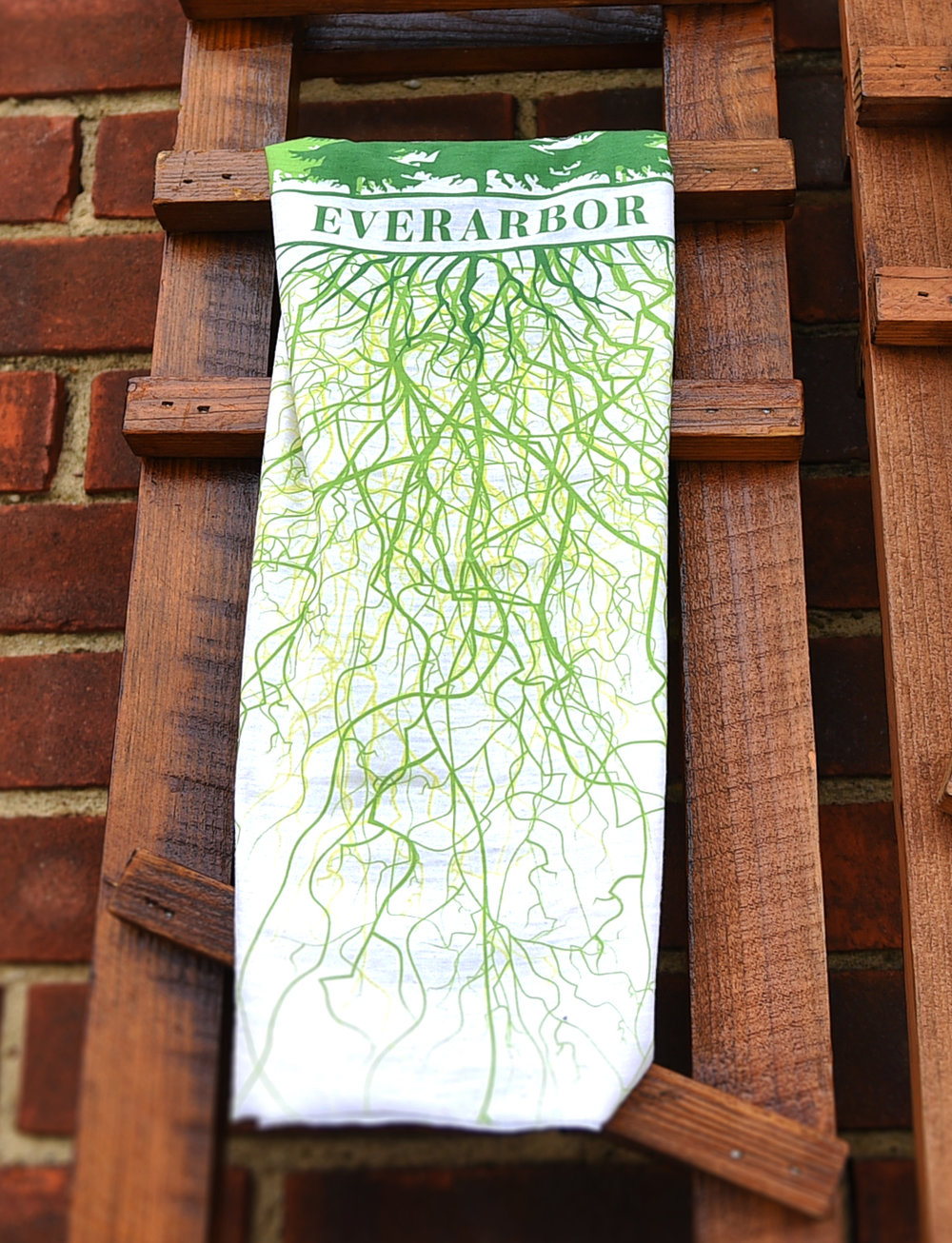 EVERARBOR_BRANDING_2019_KB0027.jpg